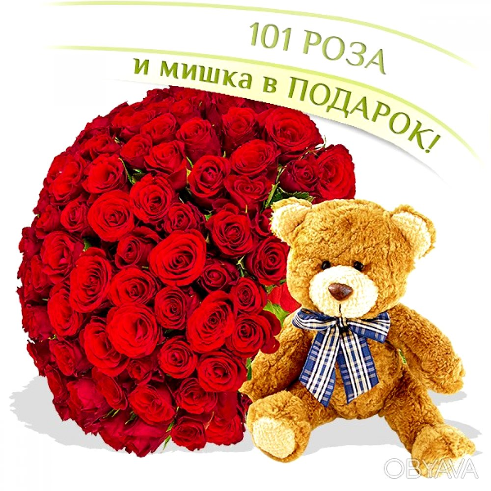 101 красная роза + мишка