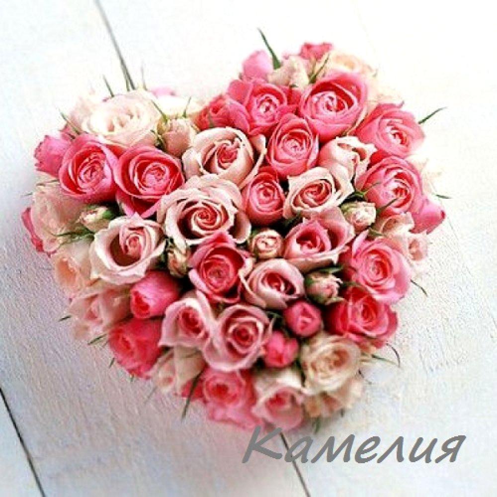 Сердце №13