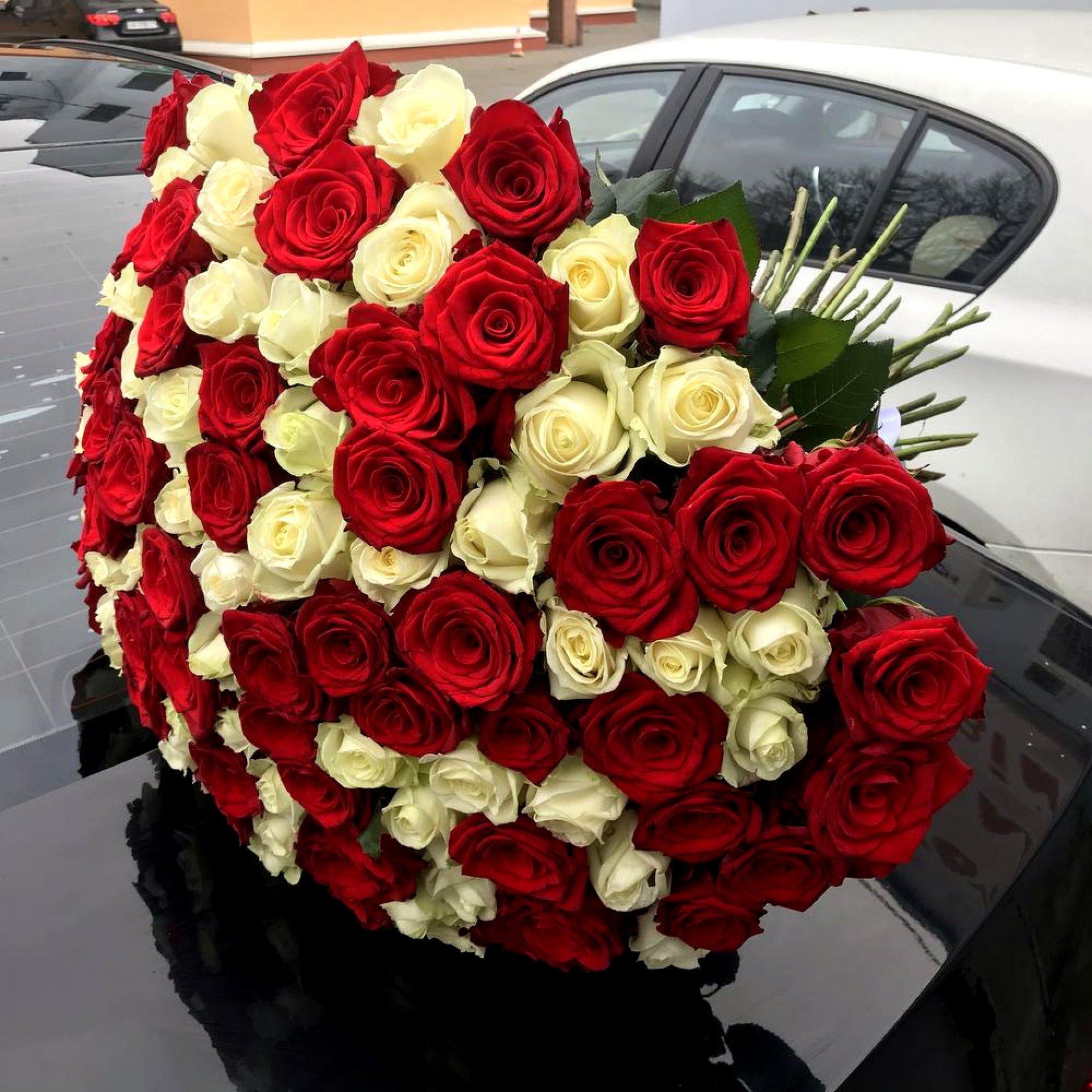 Букет красных и белых роз (101 шт)