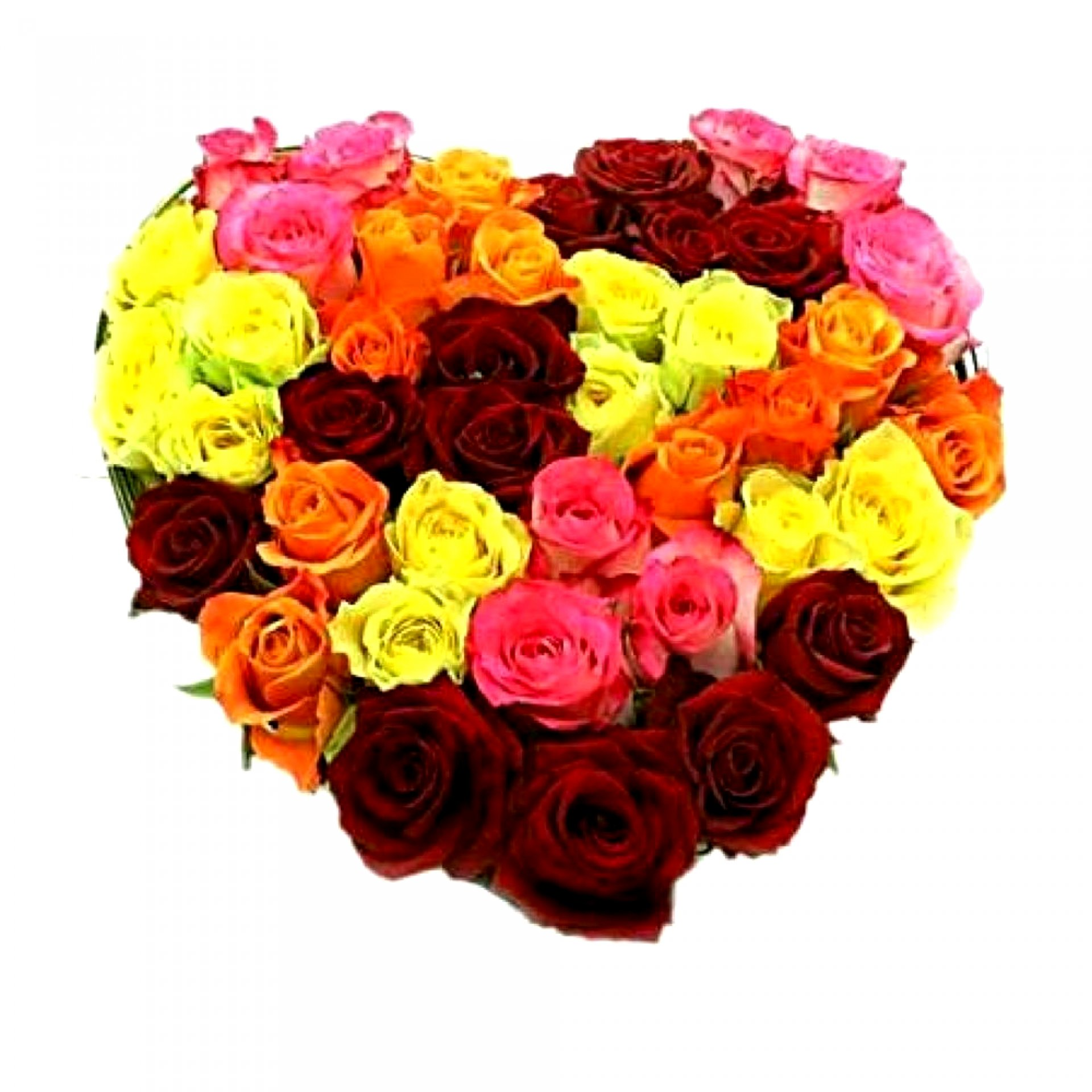 Сердце из роз (45 шт)