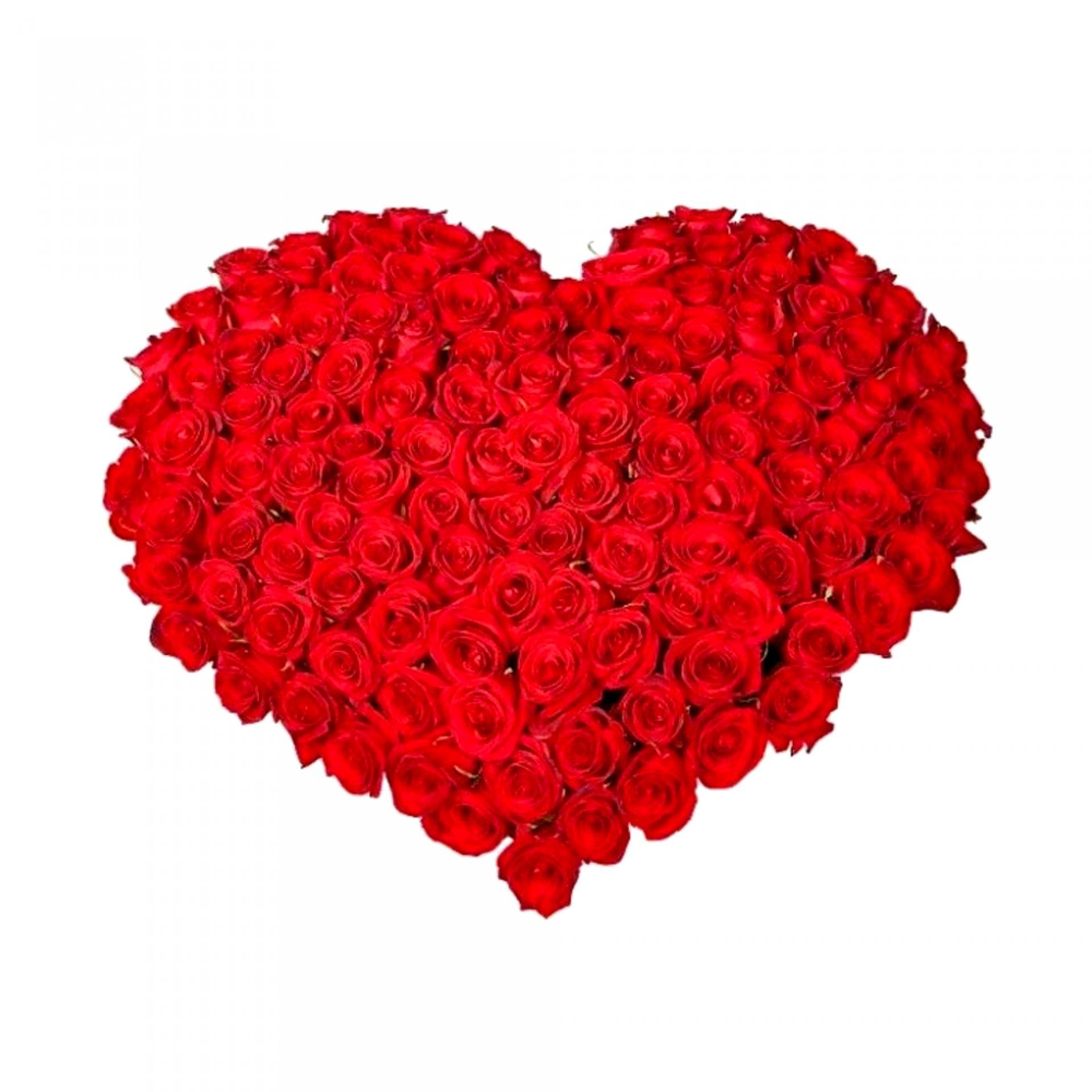 Сердце из красных роз (101 шт)