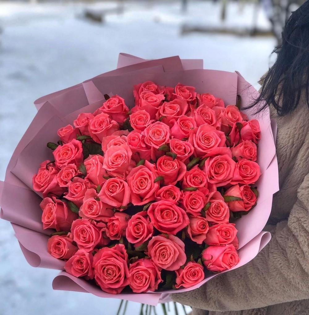 51 роза Карина