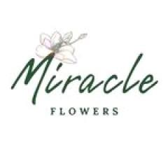 miracle-dnepr